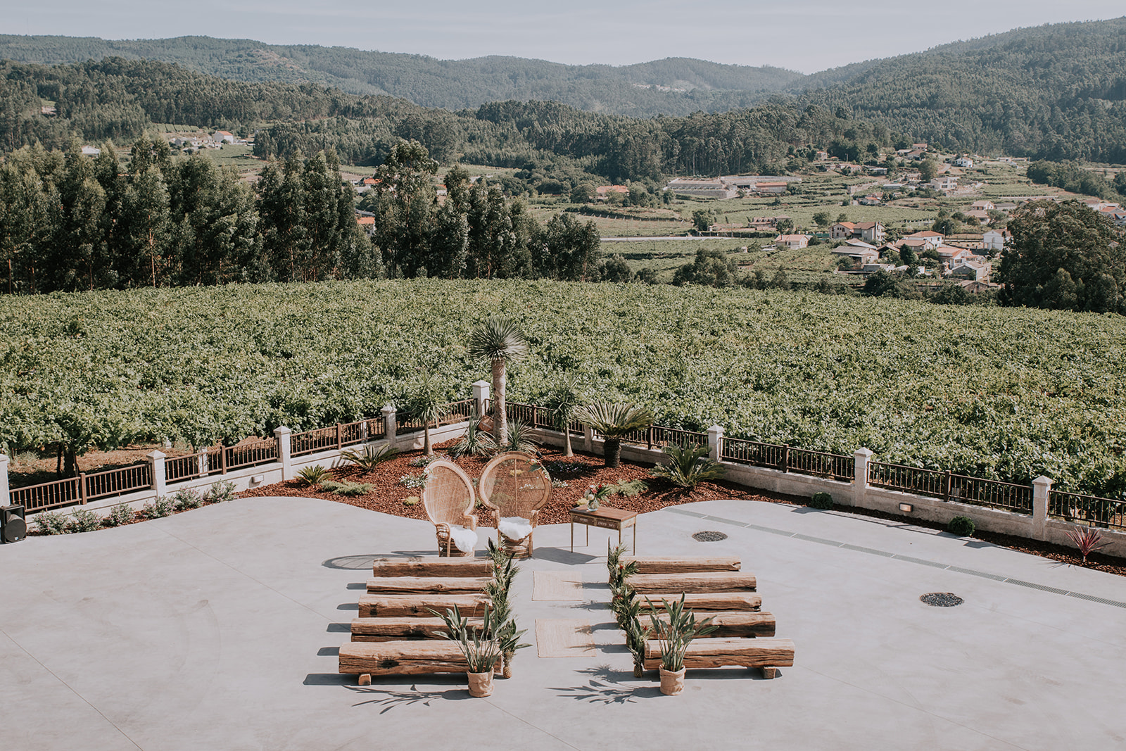 Bodega Laureatus viñedos
